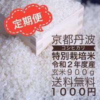 【定期便】コシヒカリ白米900 g 送料無料 1000円