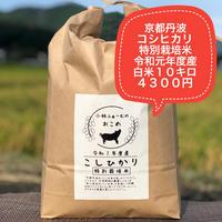白米 10キロ 京都丹波コシヒカリ 令和元年度産 特別栽培米