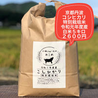 白米 5キロ 京都丹波コシヒカリ 令和元年度産 特別栽培米