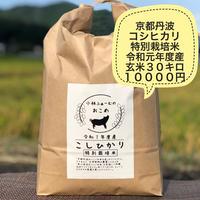 玄米 30キロ 京都丹波コシヒカリ 令和元年度産 特別栽培米