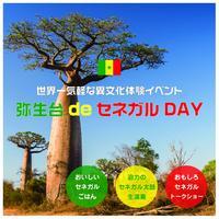 【二部も残り1枠!】世界一気軽な異文化体験イベント「弥生台 de セネガル DAY」参加申込