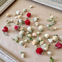 Dried flower's* / Autumn color assort  *A
