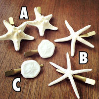 starfish & sand dollar hair accessory