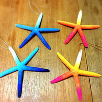 colorful starfish charm