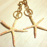 painted starfish key holder