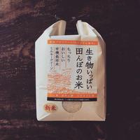 生き物いっぱい田んぼのお米2kg