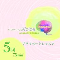 75分x5回割引チケット     ソマティクスVoiceエクササイズ オンラインプライベート