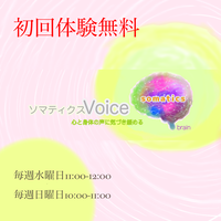 初回体験無料60分 X1回チケット ソマティクスVoiceエクササイズ オンライングループ
