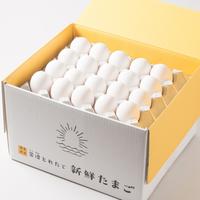 【定期便】朝日(白たまご)155個 + 5個保証(計160個)