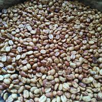 2020年度・徳之島産発酵コーヒー豆(50g)