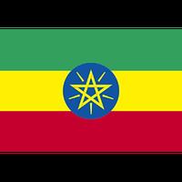 「香り豊かな華やかな深煎り」エチオピア イルガチェフェG1(フルシティロースト)210g