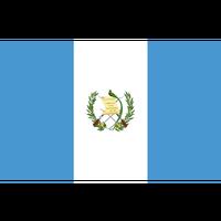 「上品な甘酸味」グアテマラ ラ・クプラ農園(ミディアムロースト)210g