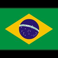 「香ばしい丸い苦味」ブラジル ファゼンダ・パッセイオ(フルシティロースト) 210g