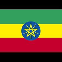 「ベリー系の複雑な風味とコク」エチオピア イルガチェフェG1(ハイロースト)210g
