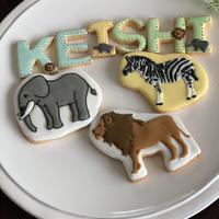 動物セット お誕生日に アイシングクッキー