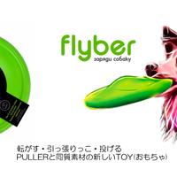 フライバー(flyber)~まさかディスクと思っていませんか?~