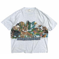 Made in USA / 90's YOSEMITE National Park Tee / Ash / Used
