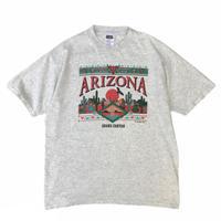 94's ARIZONA GRAND CANYON Tee / Ash / Used