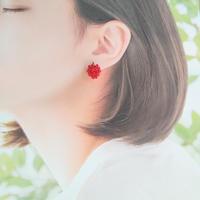 木苺のピアス