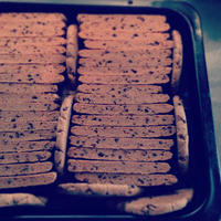 カカオの厚焼きクッキー(5本入り)