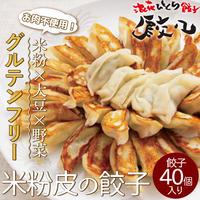 [送料込](グルテンフリー)米粉皮の餃子(肉不使用) 40個【チャオチャオ】