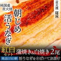 [送料込]朝じめ活鰻 紅白セット(蒲焼&白焼)【炭火焼 寝床】
