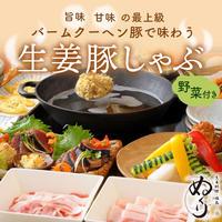 [送料込]バームクーヘン豚の生姜豚しゃぶセット(野菜付き)(2~3人前)【ぬくり】