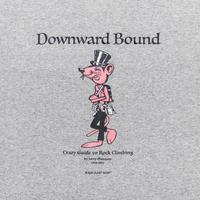 TACOMA FUJI RECORD / Downward Bound  designed by Jerry UKAI / タコマフジ / ジェリー鵜飼 / ヘザーグレー