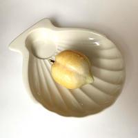 VTG Shell shape dish