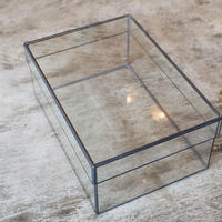 GLASS CASE L
