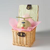 早期発送割引(11月発送)・【バスケット入り】静岡マスクメロン・1個入り