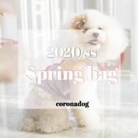 2020  corona Spring bag