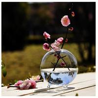 ガラス花瓶  クリアボール  1個  水耕栽培  10cm   EI06