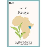<アフリカ> ケニア リーフ
