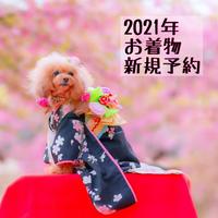 2021年 お着物 新規予約