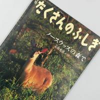 Title/ たくさんのふしぎ  Author/ 大竹英洋