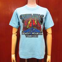 ビンテージ80's●RUBY FALLSプリントTシャツ水色S●210602s7-m-tsh-ot 1980s滝観光地土産物テネシー州スーベニア