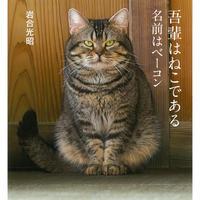 【岩合光昭】IWAGO'S BOOK ⑥『吾輩はねこである 名前はベーコン』