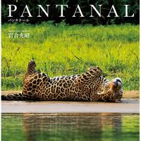 【岩合光昭】写真集『PANTANAL パンタナール』