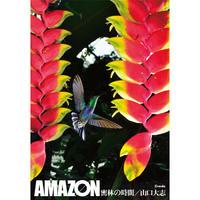 【山口大志】写真集『AMAZON 密林の時間』