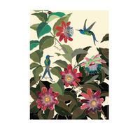 B4サイズポスター ハチドリとトケイソウ