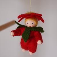 ポインセチアの赤ちゃん(吊し)