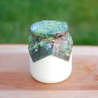 グラスフェッドヨーグルト(Yogurt)