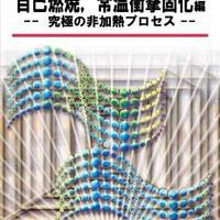 セラミックスの高速焼結(2)  自己燃焼,常温衝撃固化編 ------究極の非加熱プロセス-----