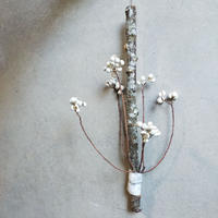 苔木のお正月飾り