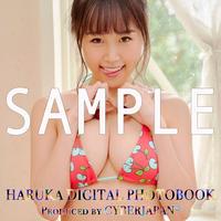 HARUKA DIGITAL PHOTO BOOK(デジタル写真集)Vol.2