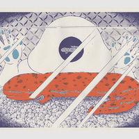 私の山椒魚 02/藤原美咲