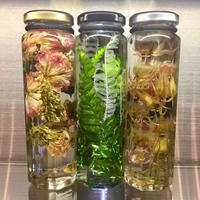 Lab bottle plants LIMITED 200ml ( 3pcs set ver.2)