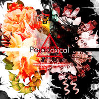 ▲i.D.A 1st EP-【 Paradoxicical】