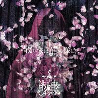 NETH PRIERE CAIN 2nd Single「散り様は華の様に。」B-type
